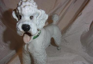 купить фарфор, собака фарфоровая,  статуэтка фарфоровая пудель, белый пудель, королевский пудель, собака фарфоровая, Теодор Кернер (Theodore Kаerner), Розенталь (Rosenthal)