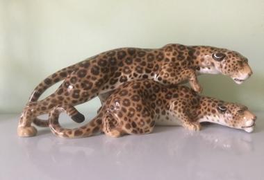 купить фарфоровую статуэтку, леопарды фарфор, статуэтка фарфоровая леопард,  леопард   фарфоровый,  Карл Туттер, Karl Tutter,  Хутченройтер,  Hutschenreuther