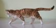 купить фарфоровую статуэтку, статуэтка фарфоровая кот, рыжий кот фарфор,  кот  фарфоровый, Хутченройтер (Hutschenreuther)