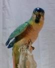 купить фарфор, фигура фарфоровая попугай,  зеленый ара  фарфоровый, попугай фарфоровый, фарфор Германия, фарфор Карл Энс (Karl Ens)