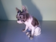 купить фарфоровую статуэтку, статуэтка фарфоровая собака, щенок фарфор,  щенок бульдога фарфоровый, бульдог фарфор, французский бульдог фарфоровый,  Хутченройтер (Hutschenreuther)