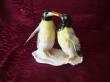 купить фарфор, фигура фарфоровая пингвин, два пингвина   фарфор, пингвин фарфоровый, фарфор Германия, фарфор Карл Энс (Karl Ens) купить