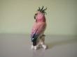купить фарфор, фигура фарфоровая попугай,  какаду   фарфоровый, попугай фарфоровый, фарфор Германия, фарфор Карл Энс (Karl Ens) купить