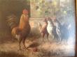 картина, доска, масло, купить картину , птичий двор, петух,  картина птицы,  картина птицы,    Хагенауэр (Hagenauer)